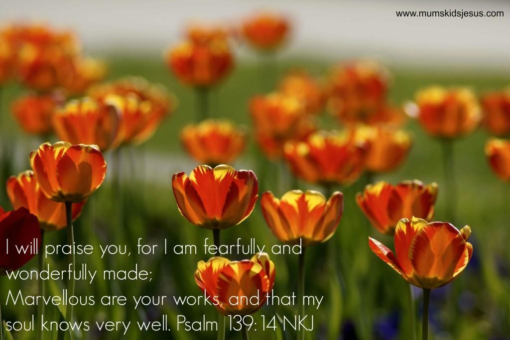 Orange Tulips card
